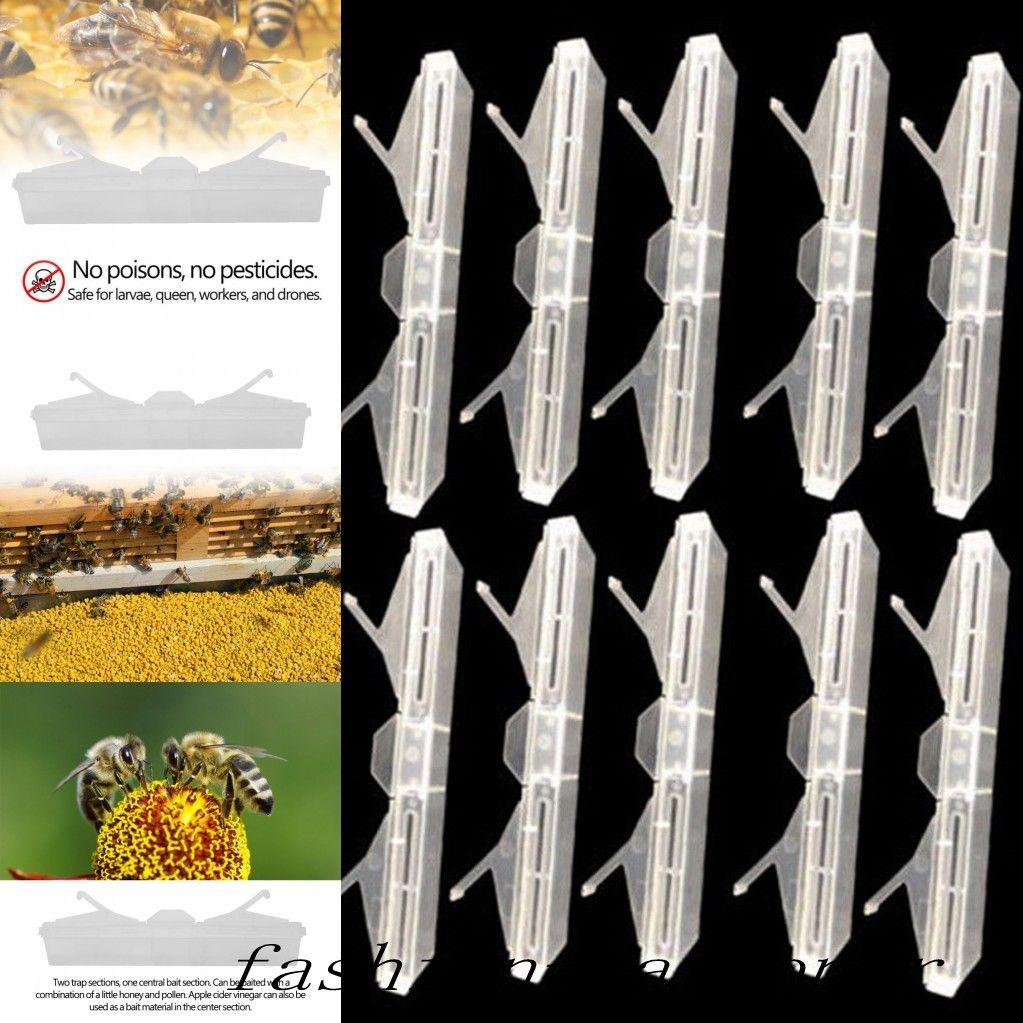 10 Reusable Beetle Jails Traps For Hive Beetles